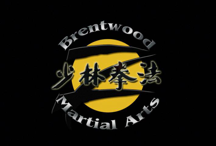 Brentwood Martial Arts Logo Animation-Desktop-poster
